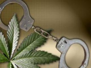 Elk Grove Police Arrests Probationer With Outstanding Warrants, Allegedly Dealing Pot