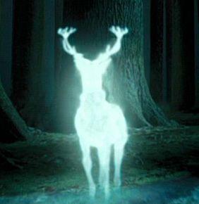 Harry Potter, NLP, Neuro-linguistic programming, Programowanie Neurolingwistyczne, myślodsiewnia, expecto patronum, Rozwój osobisty, riddikulus, firebolt,