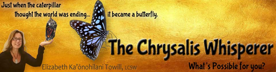 Chrysalis Whisperer