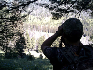 Idaho Back Country