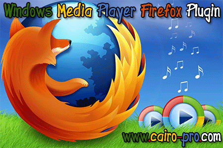 Download the Windows Media Player Firefox Plugin