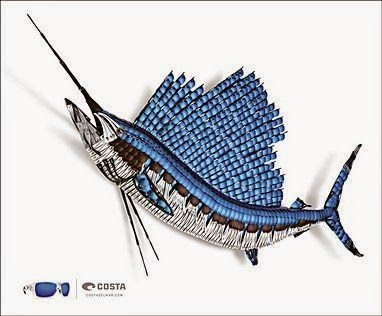Costa Sailfish sunglass Optical Lens Art sculpture