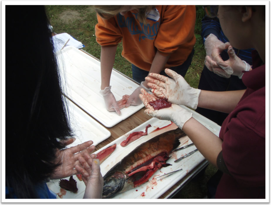 The Fish Files: My Life Aquatic 2011 - Teaching Youth About Fish ...