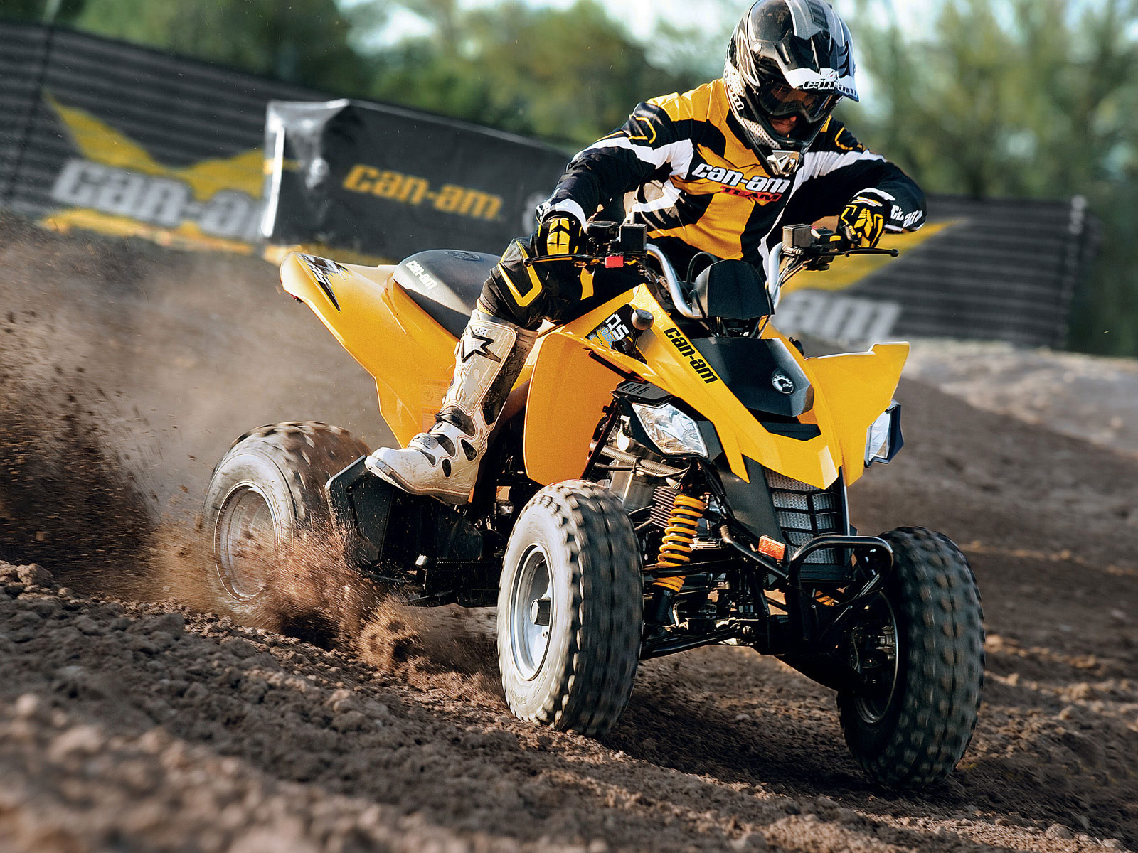 2012 Can-Am DS 250 ATV pictures 1