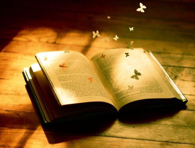 Fotos de libros - Imagenes de librerias ...