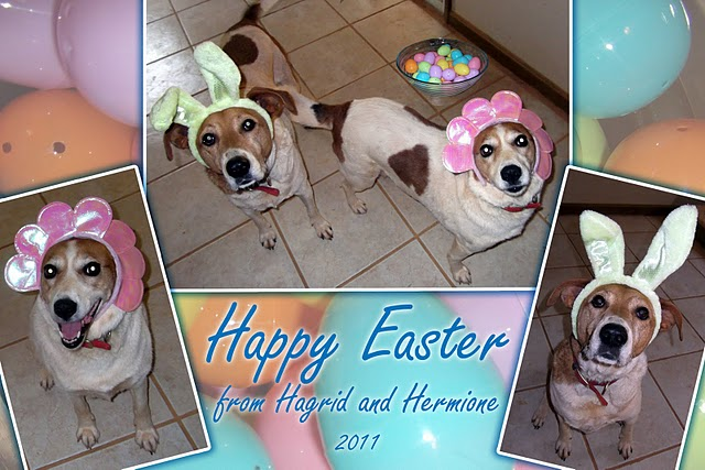 happy easter cards images. happy easter cards printables.