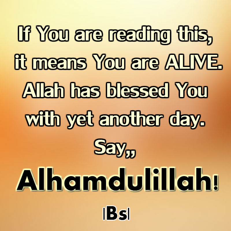 guest blessing of allah May allah allah grant us sabr during the time of calmities abdul haqq allahamdulillah this is an enormous revelation to me, it has been some kind of confirmation or better still explanation to what my family and i are going through, inshaallah am reliefed.