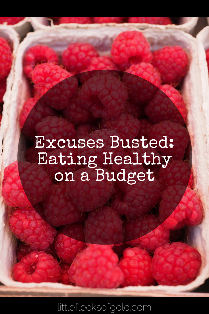 Excuses Busted: eating Healthy on a Budget | Little Flecks of Gold