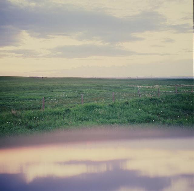 Elyse Bouvier - Prairies