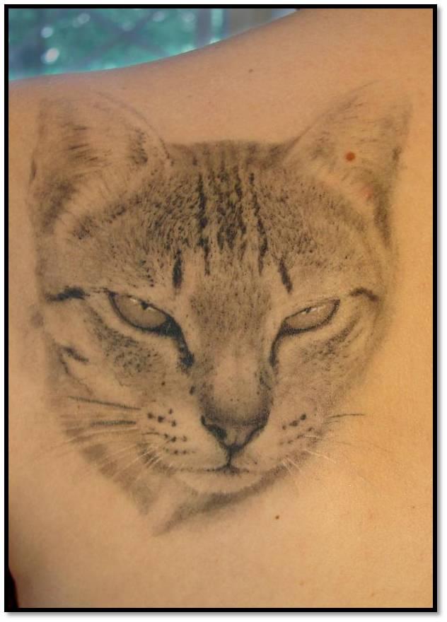 Trend Tattoos
