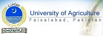 University of Agriculture Faisalabad(UAF)