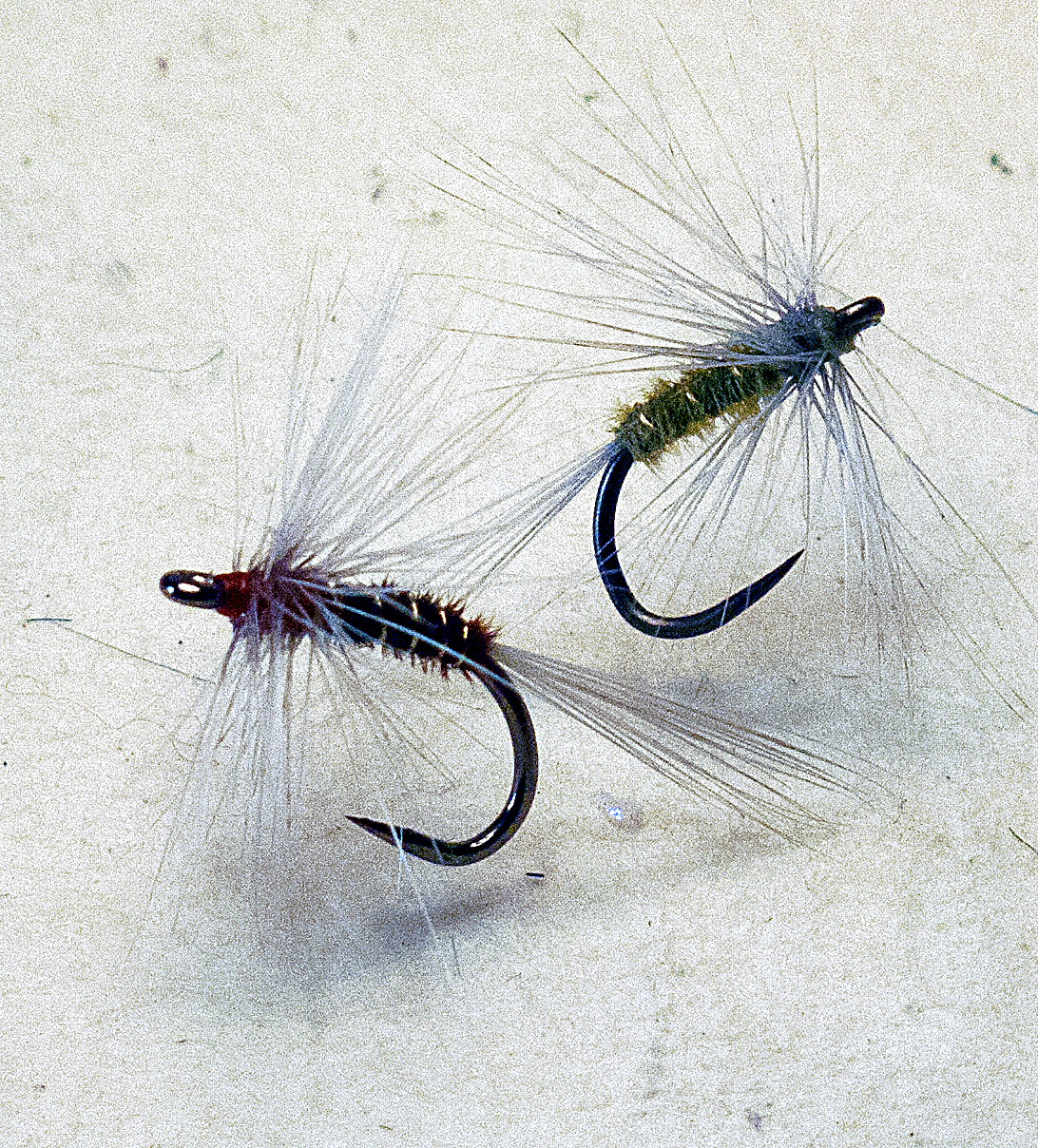 Dry Fly \'Expert\': A Traditional Anatomy...