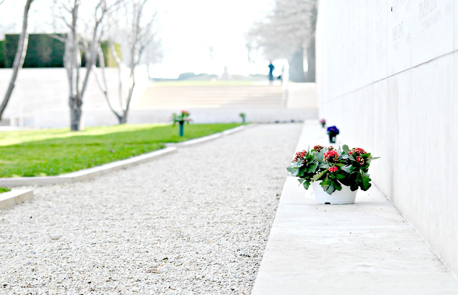 Holandia cmentarz wojskowy