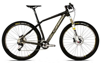 2013 Orbea Alma 29er S50 Bike