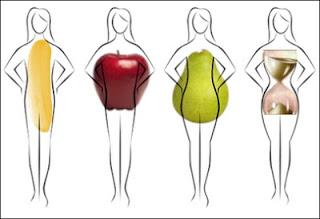 bentuk shape badan