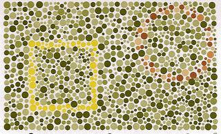 color blindness essay