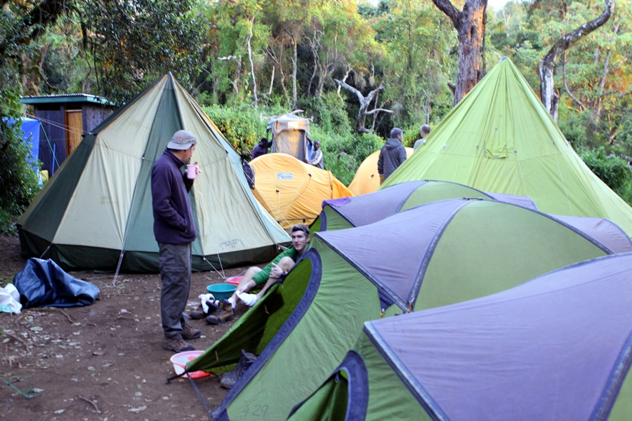 Rain Forest Camp
