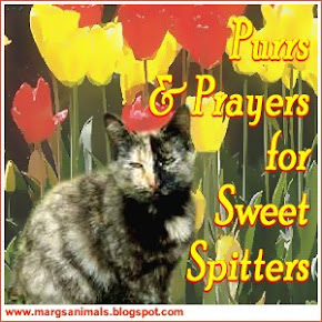 Sweet Splitters from Marg's Animals