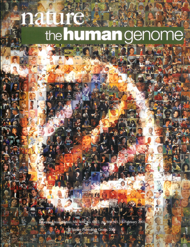 Human Genome Project Nature Science