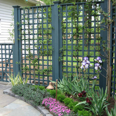 Dr dan 39 s garden tips make your patio picture perfect for Garden screening ideas