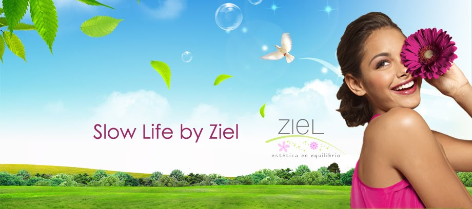 Slow Life by Ziel