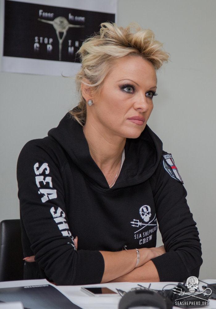 Pamela Anderson durante a conferência de imprensa nas ilhas Faroe. Foto: Sea Shepherd/Marianna Baldo