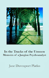 In the Tracks of the Unseen; Memoirs of a Jungian Psychoanalyst