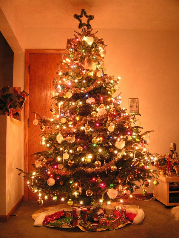 Happy christmas christmas tree pictures