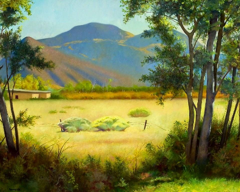 imagenes-de-paisajes-del-campo