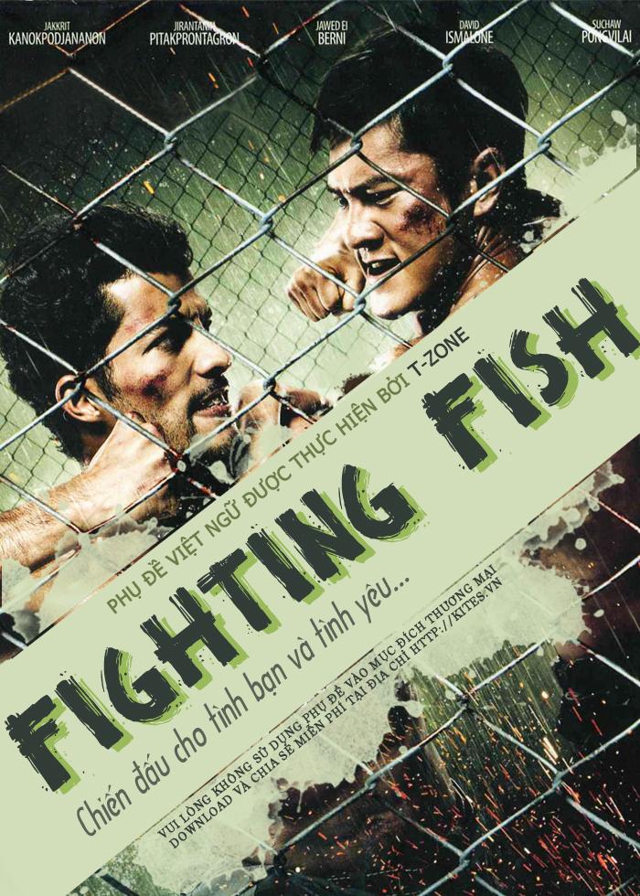 Võ Đài Sinh Tử Fighting Fish