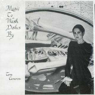 TOM CAMERON-MUSIC TO WASH DISHES BY, LP, 1982, USA