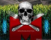 Não compre e não coma trangenicos o veneno na sua mesa