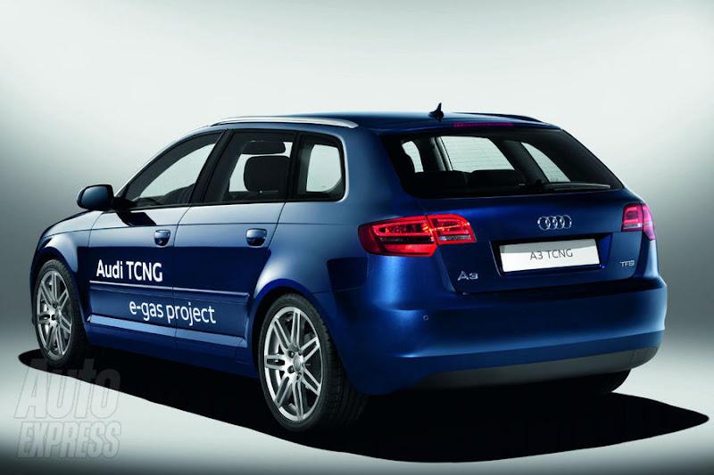 Audi A3 E-Gas Project