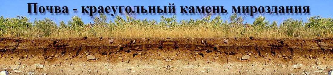Почва - краеугольный камень мироздания