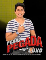 FORRO PEGADA DE LUXO