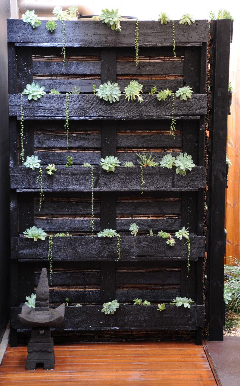 Jardim vertical com estrutura de paletes de madeira