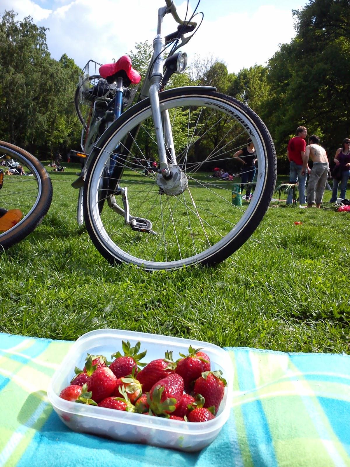 Piknikillä Volkspark Friedrichschein -puistossa.
