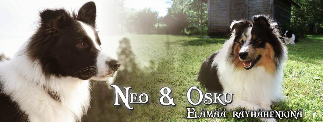 Neo ja Osku - elämää räyhähenkinä