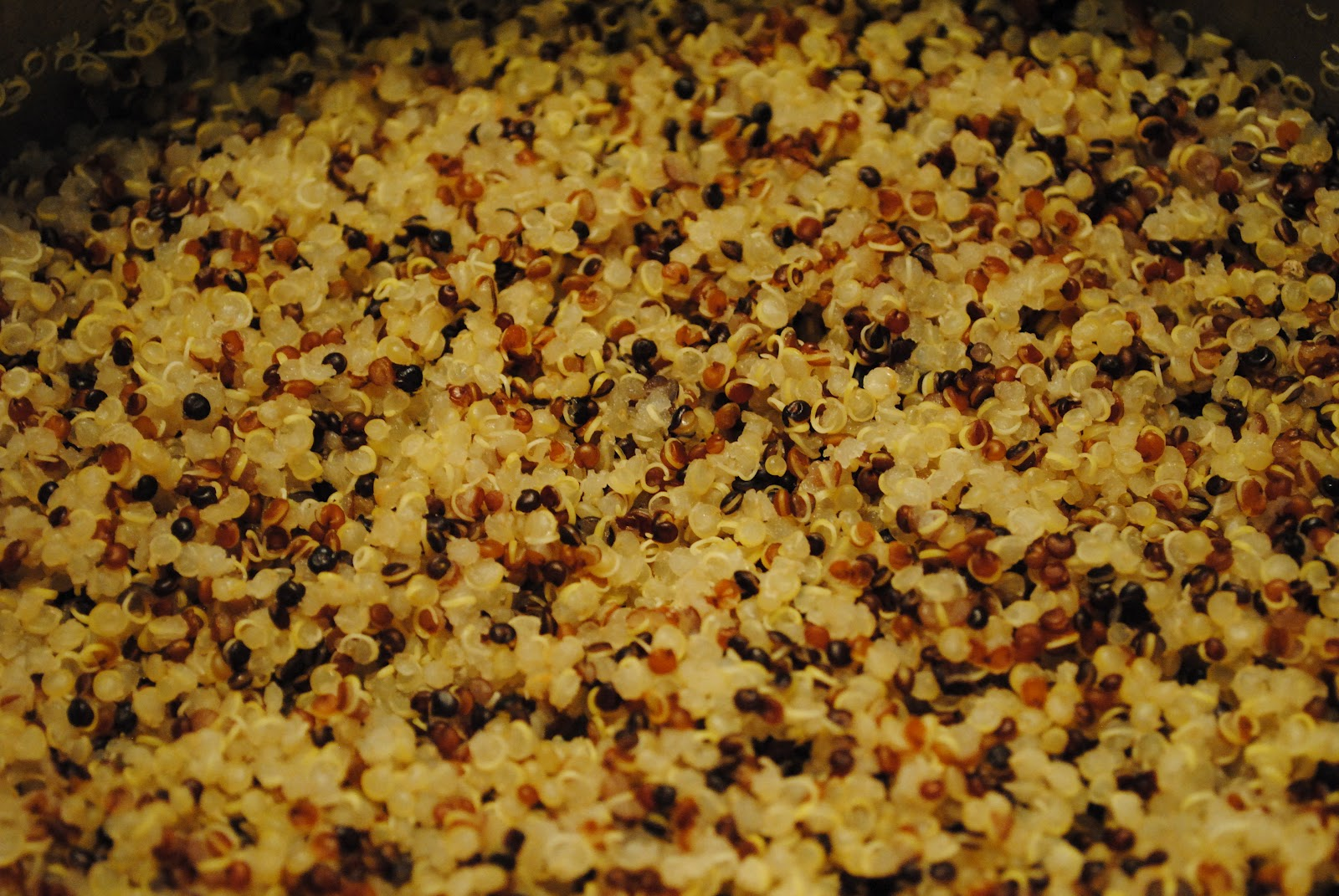 ... Adventures with Camilla: Food Matters Project: Quinoa Tabbouleh