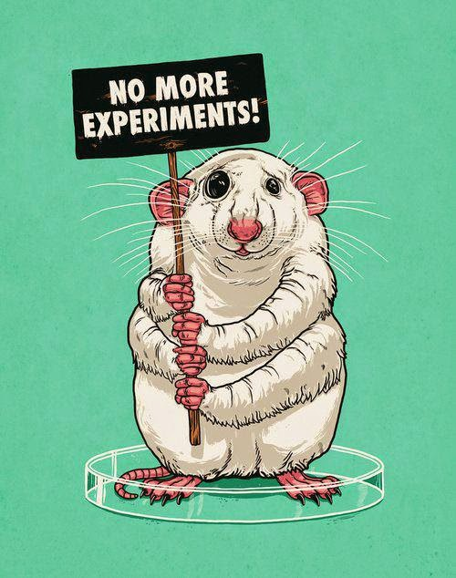 Esperimenti inutili sugli animali