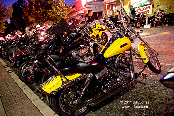 Bikes Blues And Barbeque Bikini the Bikes Blues and BBQ