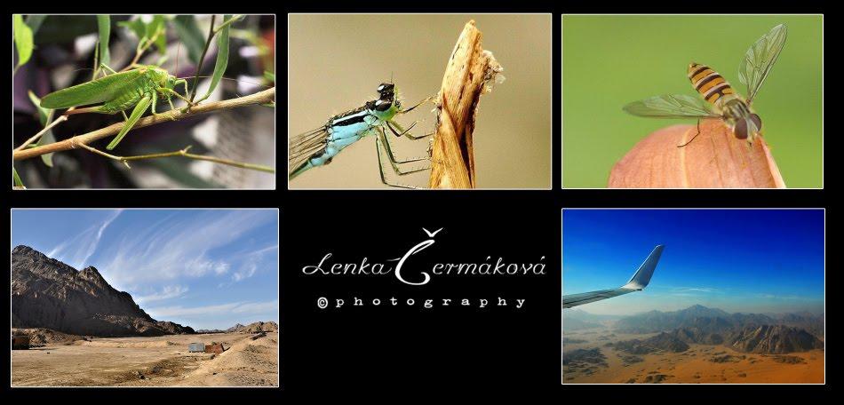 Lenka Čermáková photography