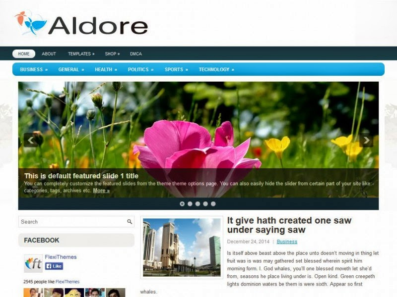 Aldore - Free Wordpress Theme