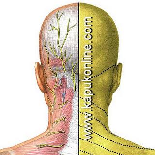 Tips Bagaimana Mencegah Nyeri Leher