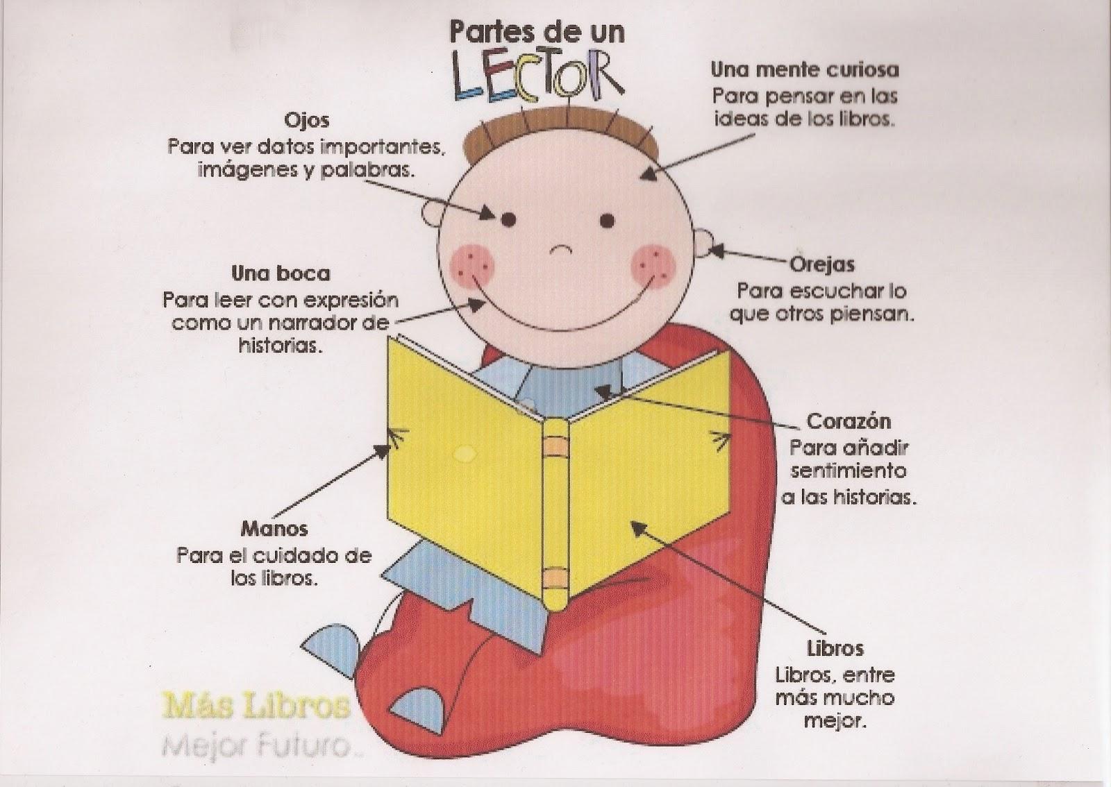 Leer es siempre un viaje sorprendente: Anatomía del lector