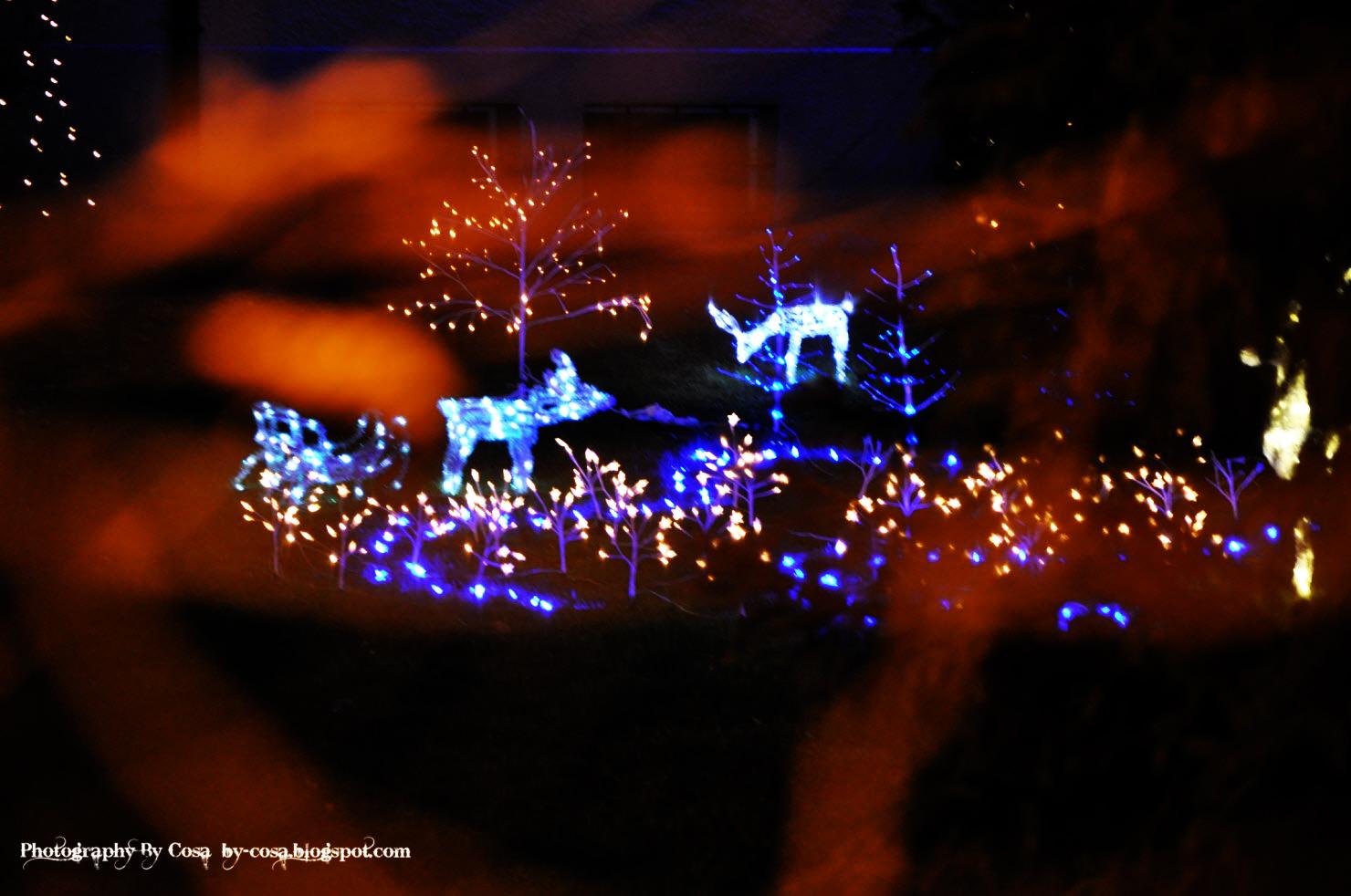 Weihnachten in Zürich: by-cosa-photography.blogspot.com/2011/12/weihnachten-in-zurich.html