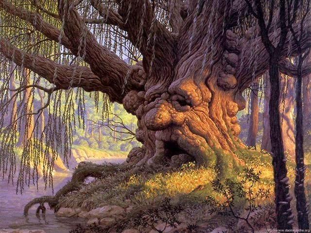 Los cuentos del árbol viejo (Ismael Contreras Carmona)