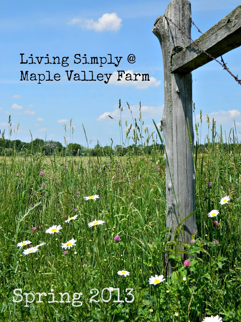 Living simply at Maple Valley Farm