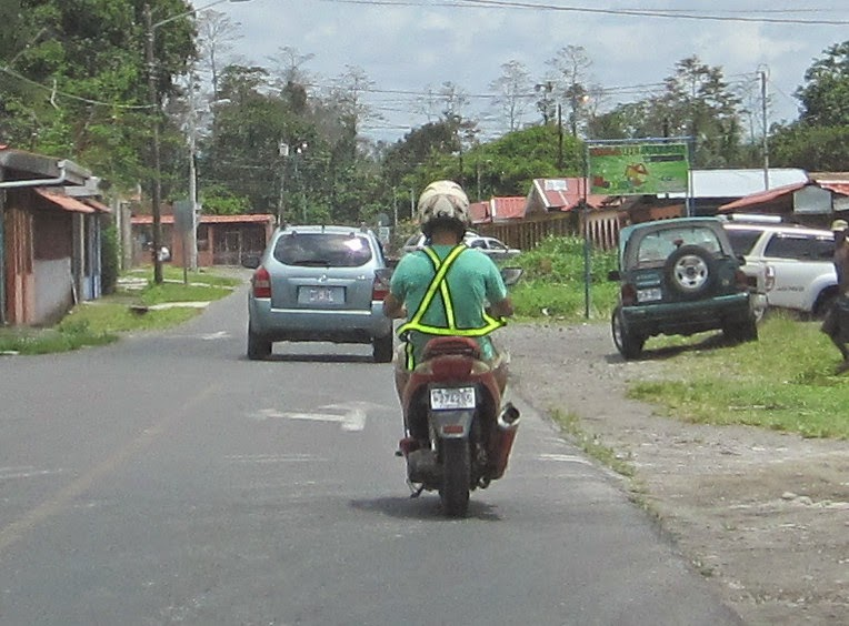 costa rica safety belt
