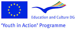 Youth in Action - European Voluntary Service